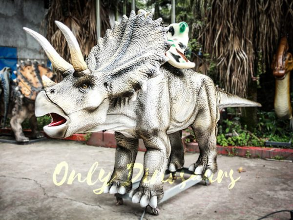 Realistic Animatronic Triceratops Stationary Ride in Dinosaur Park1