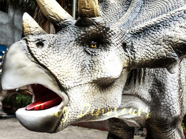Realistic Animatronic Triceratops Stationary Ride in Dinosaur Park3