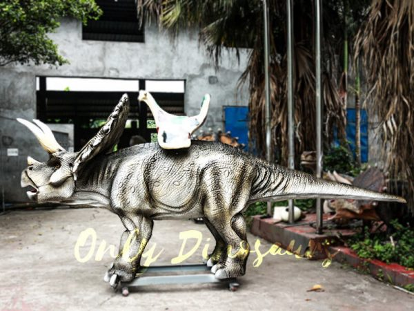 Realistic Animatronic Triceratops Stationary Ride in Dinosaur Park4