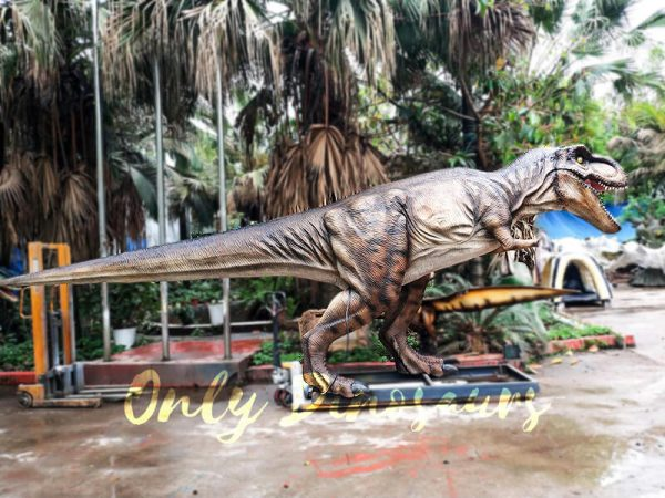 Realistic Animatronic Tyrannosaurus of Jurassic World8 1