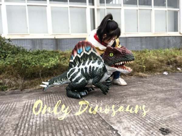 Realistic Baby Spinosaurus Puppet Colorful Hand Puppet2 1