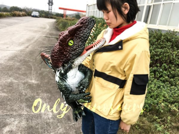 Realistic Baby Spinosaurus Puppet Colorful Hand Puppet5 1
