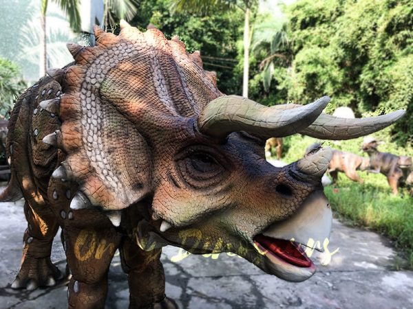 Realistic Dinosaur Triceratops Costume for Two Person Performance2 1