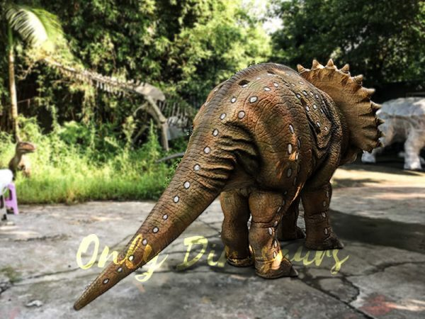 Realistic Dinosaur Triceratops Costume for Two Person Performance3 1