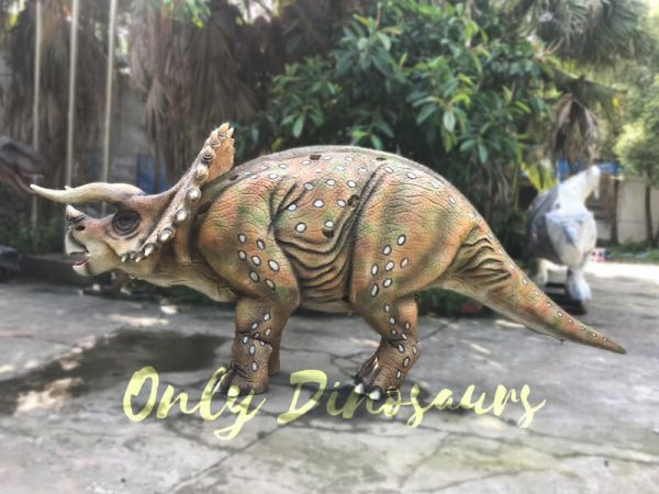 Realistic-Dinosaur-Triceratops-Costume-for-Two-Person-Performance5-2