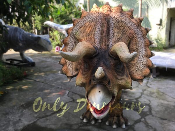 Realistic-Dinosaur-Triceratops-Costume-for-Two-Person-Performance6