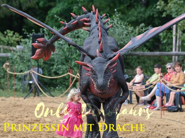 Realistic-Halloween-Dragon-Costume-For-Adults9