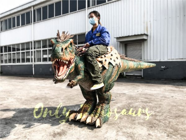 Realistic Ride on Kids Costume with Feathers1 1