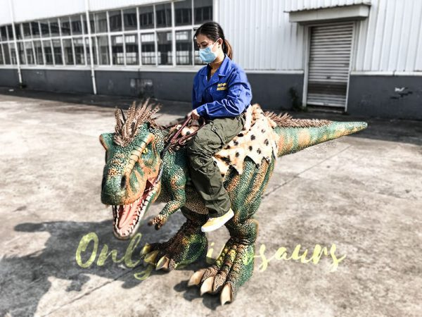 Realistic Ride on Kids Costume with Feathers4 1