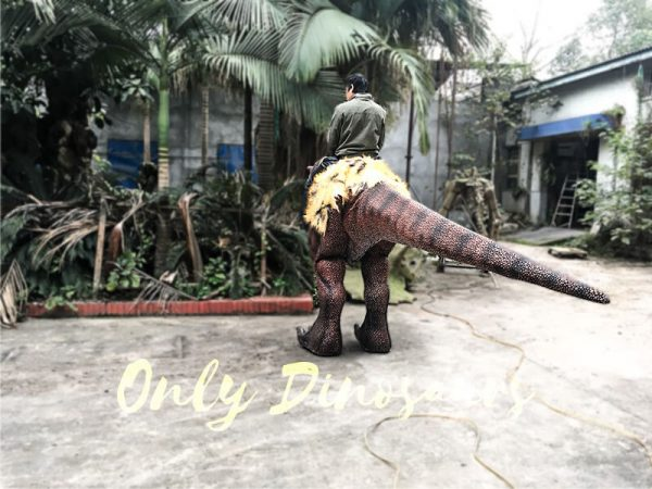 Realistic Riding T Rex Suit for Theme Park Stilt Suit5 1