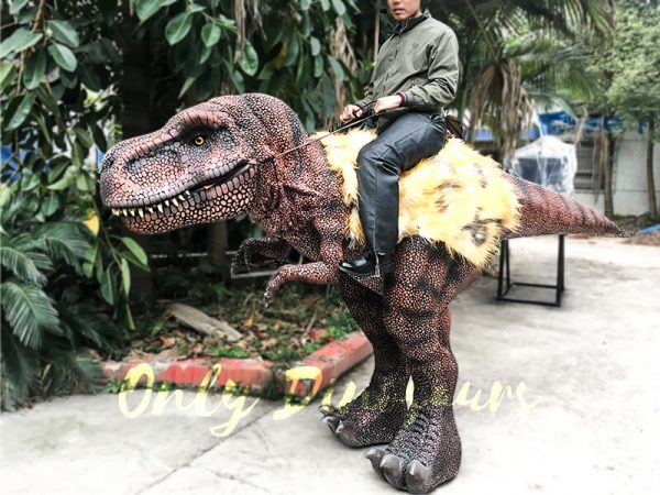 Realistic Riding T Rex Suit for Theme Park Stilt Suit6 1