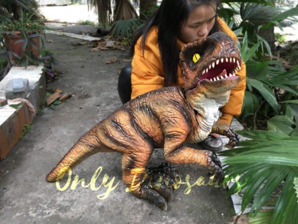 Realistic-Stripe-Baby-T-Rex-Dinosaur-Puppet11-2