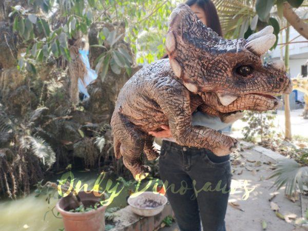 Realistic-Triceratops-Baby-Puppet-Of-Jurassic-World-Dark-Brown-2