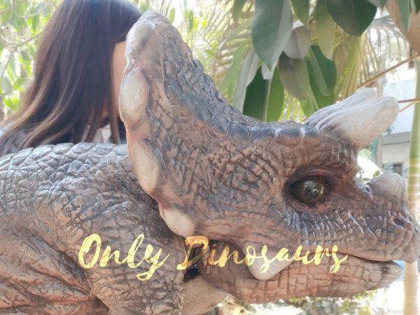 Realistic-Triceratops-Baby-Puppet-Of-Jurassic-World-Dark-Brown3-1