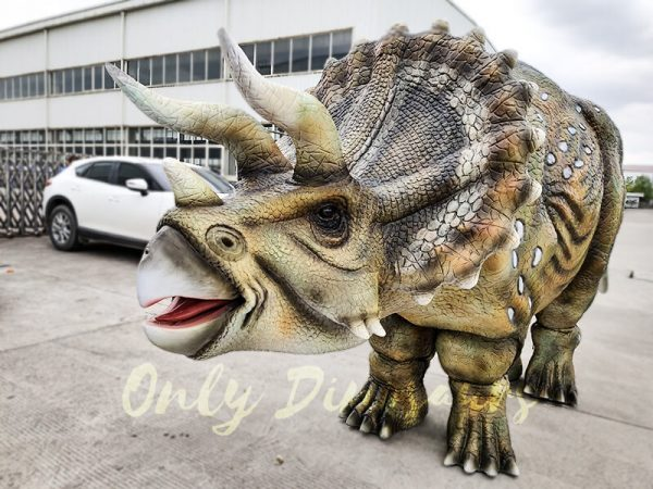 Realistic Triceratops Costume For Two Adults1 1