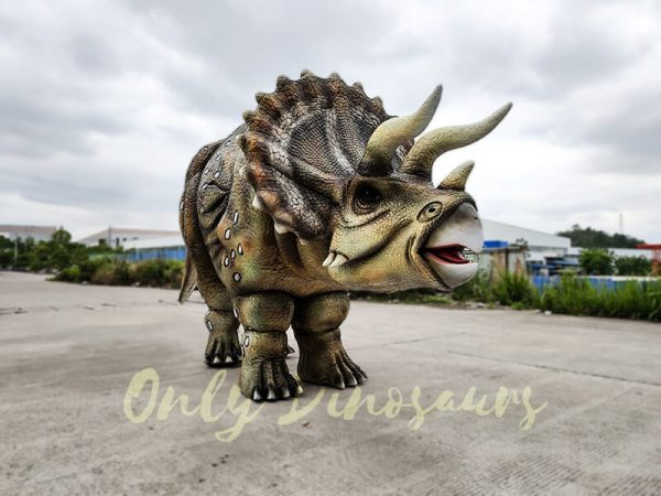 Realistic Triceratops Costume For Two Adults3 1