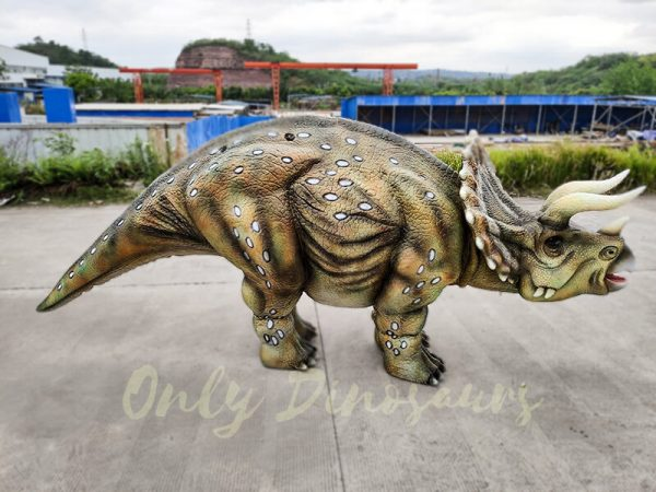 Realistic Triceratops Costume For Two Adults4 1