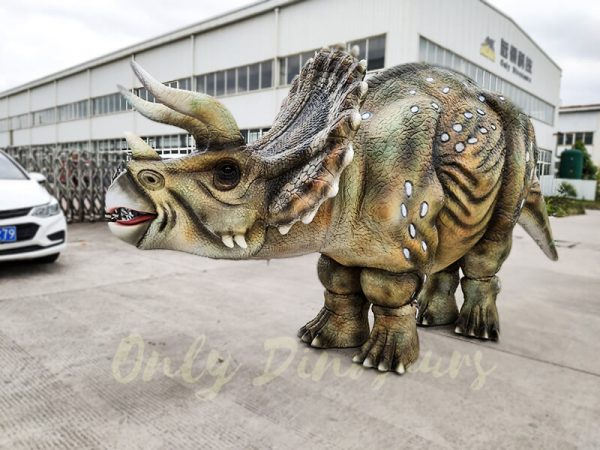 Realistic Triceratops Costume For Two Adults5 1