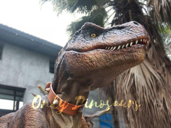 Realistic-Tyrannosaurus-Rex-Costume-Visible-Legs4-2