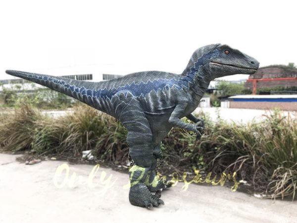 Realistic Velociraptor Costume for Adults7 1
