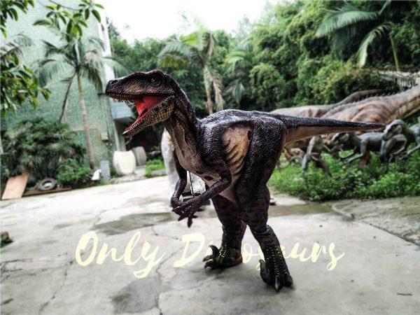 Realistic Velociraptor Suit for Prank2 1