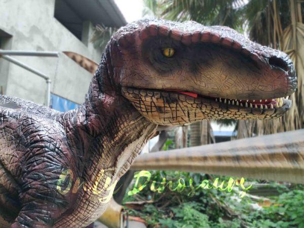 Realistic-Velociraptor-Suit-for-Prank5