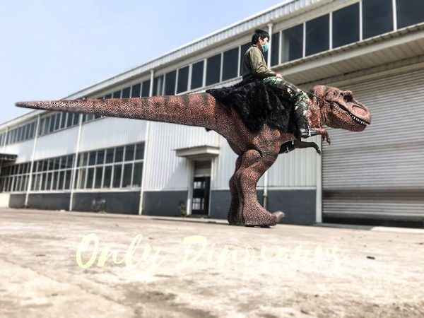 Ride On Realistic T Rex Costume1 1