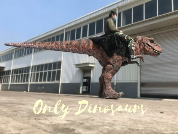 Ride-On-Realistic-T-Rex-Costume1-2