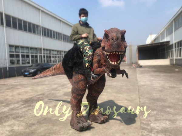 Ride-On-Realistic-T-Rex-Costume7-2