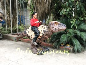 Riding Dinosaur Costume for Kids
