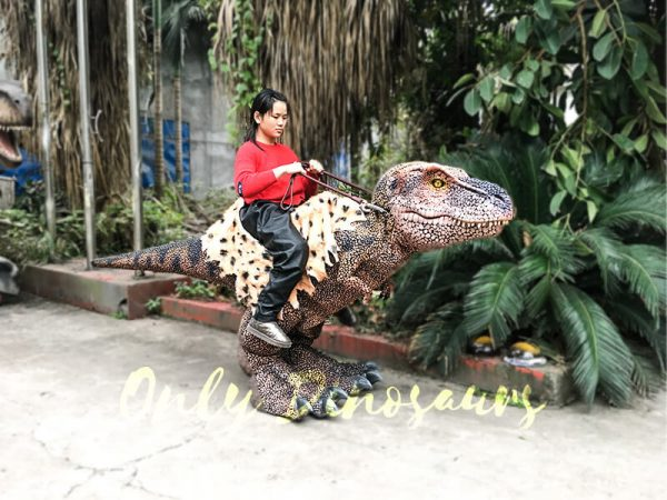 Riding Dinosaur Costume for Kids1