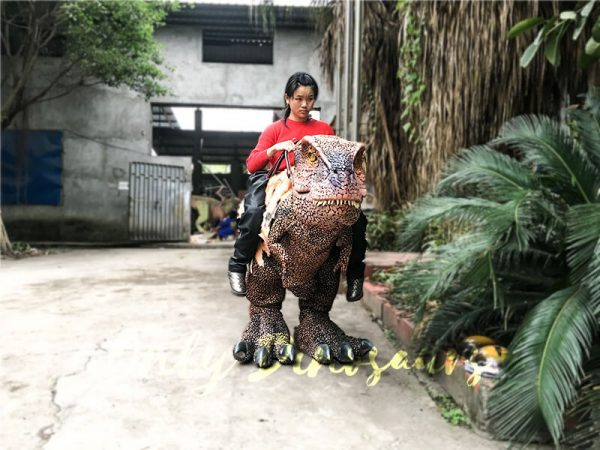Riding Dinosaur Costume for Kids5