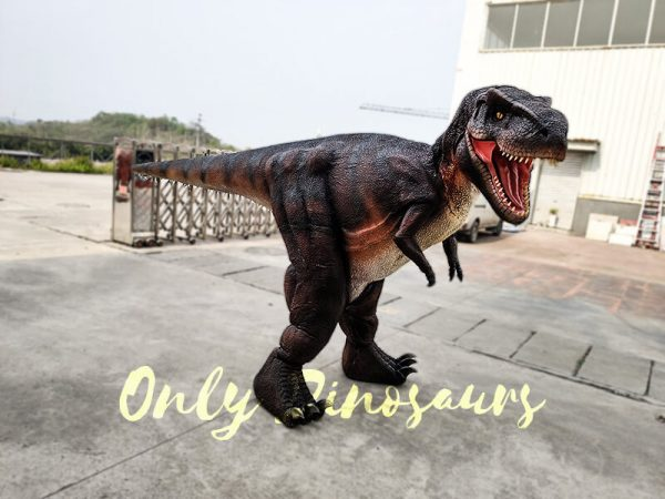 T Rex Costume for Adults Hidden Legs3 1