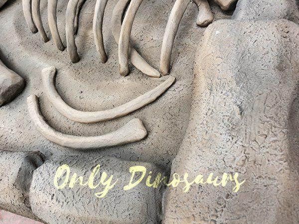 T Rex Skeleton Dinosaur Fossils Digs for Kids3 1
