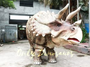 Theme Park Triceratops Dinosaur Suits