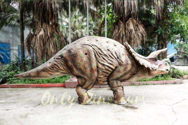 Theme Park Triceratops Dinosaur Suits5 1
