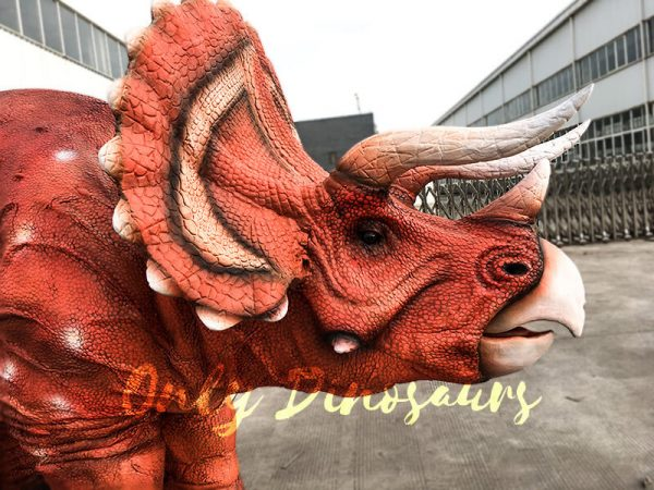 Triceratops Costume For Two Adults3 1