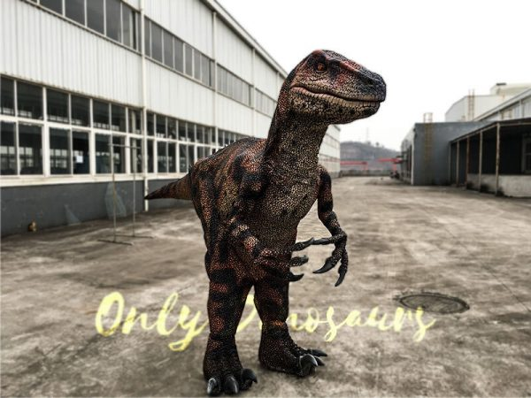 Velociraptor Costume with lifelike Eyes1 1