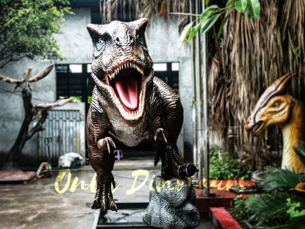 6M Tyrannosaurus Rex Animatronic Model for Amuseum Park2