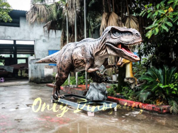 6M Tyrannosaurus Rex Animatronic Model for Amuseum Park5