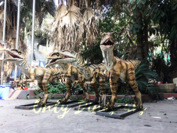 Agminate Utahraptor Animatronic Dinosaur Show Props2