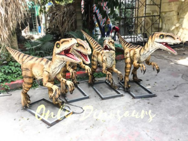 Agminate Utahraptor Animatronic Dinosaur Show Props3