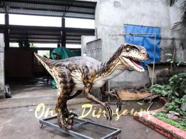 Animatronic Dinosaur Raptor for Dinosaur Park1