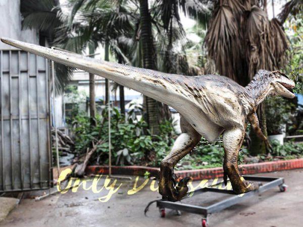 Animatronic Dinosaur Raptor for Dinosaur Park2