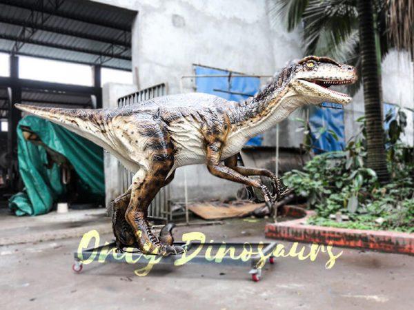 Animatronic Dinosaur Raptor for Dinosaur Park4