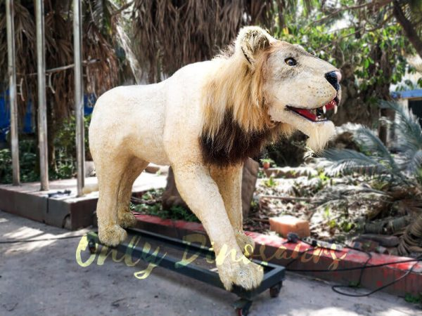 Animatronic Lion for Theme Park2