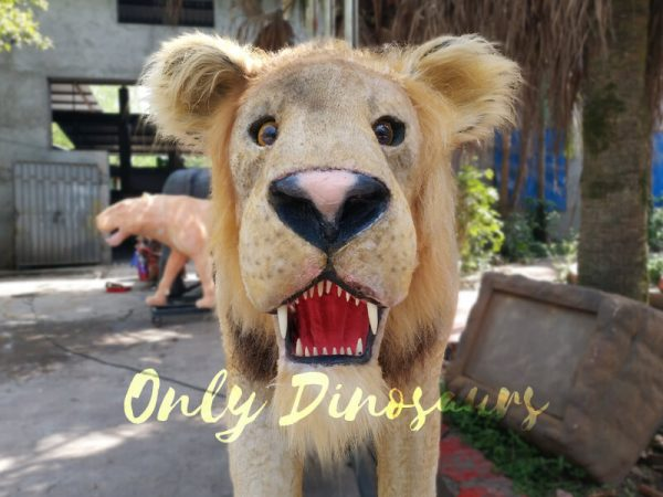 Animatronic-Lion-for-Theme-Park5