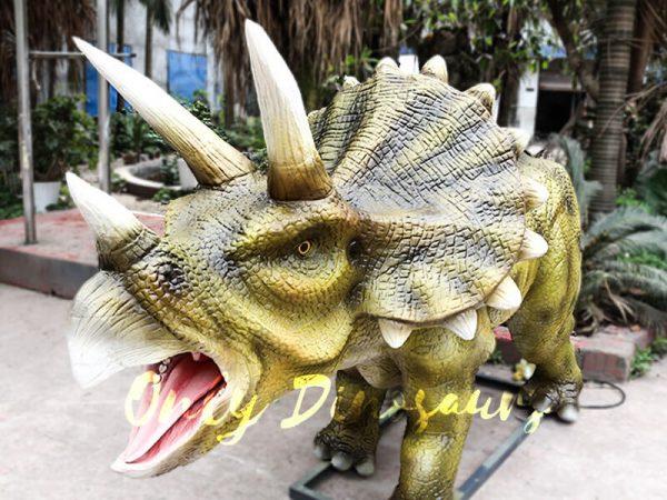 Animatronic Triceratops for Dinosaur Park1