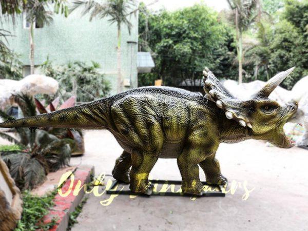 Animatronic Triceratops for Dinosaur Park2