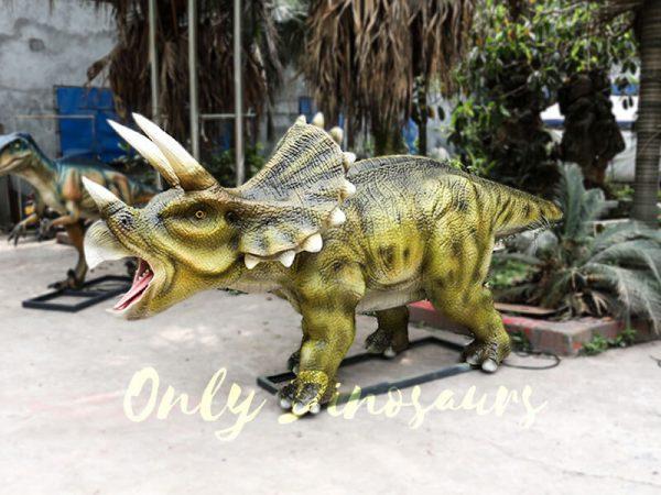 Animatronic Triceratops for Dinosaur Park3